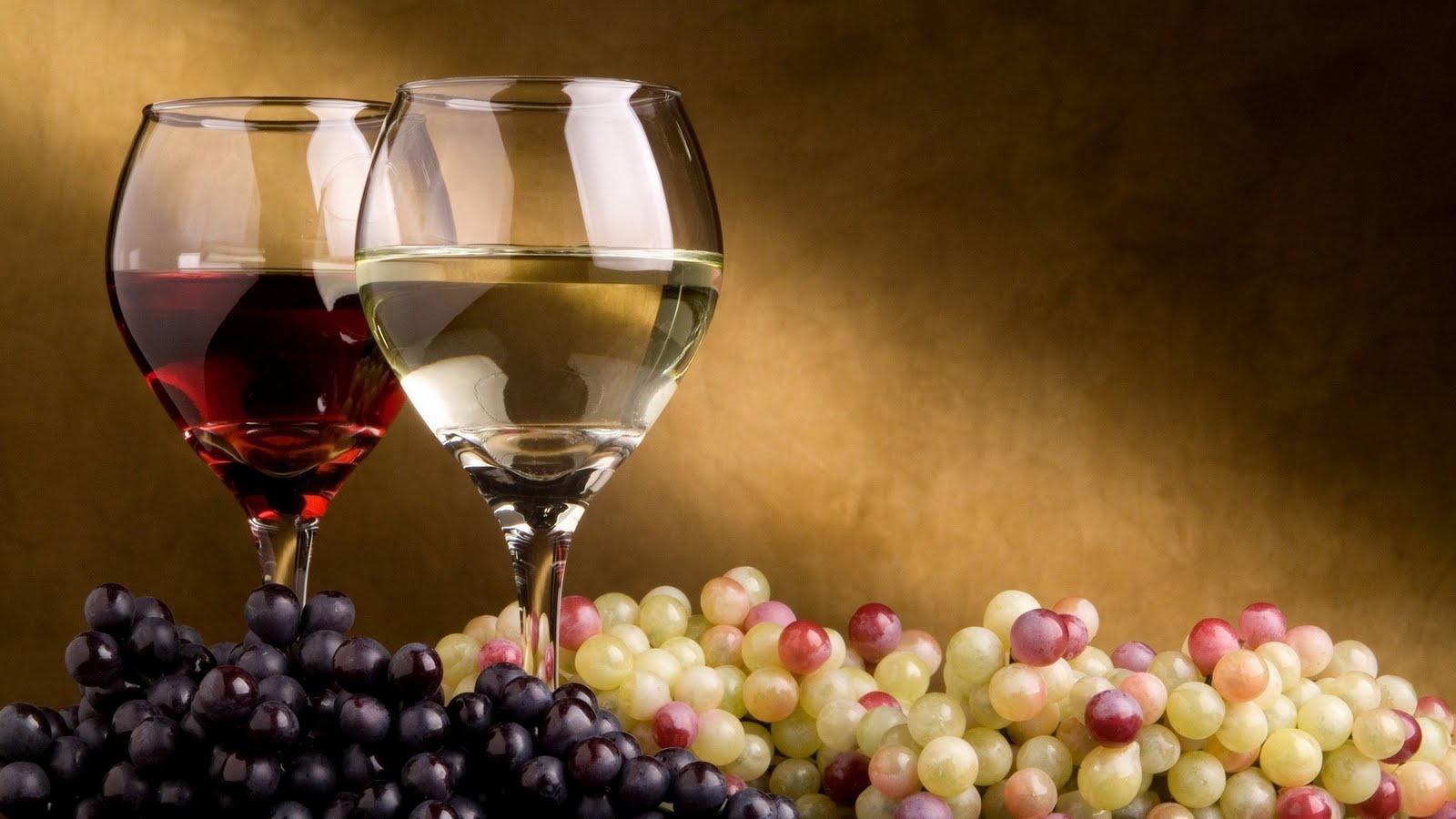 La cave polyvalente : l'accessoire idéal pour les amateurs de vin